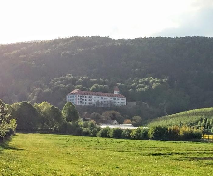 Fakulteta za kmetijstvo in biosistemske vede, Pivola